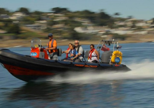 St Mawes Kayaks & Water Taxi