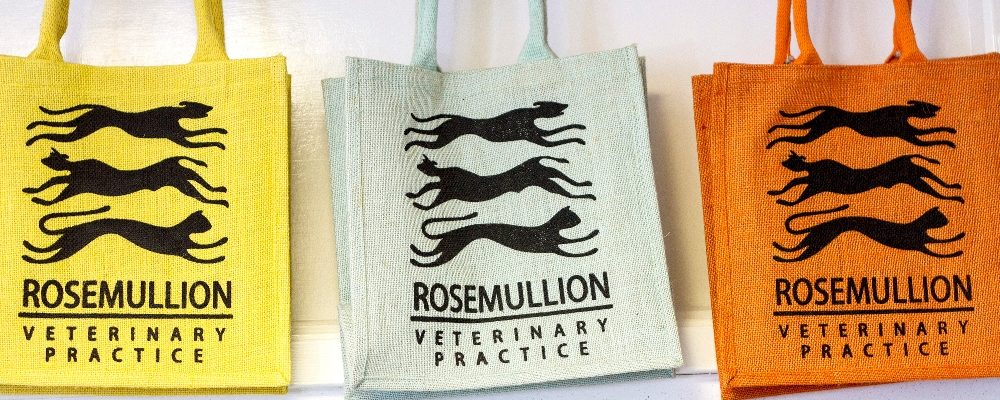 Rosemullion Vets