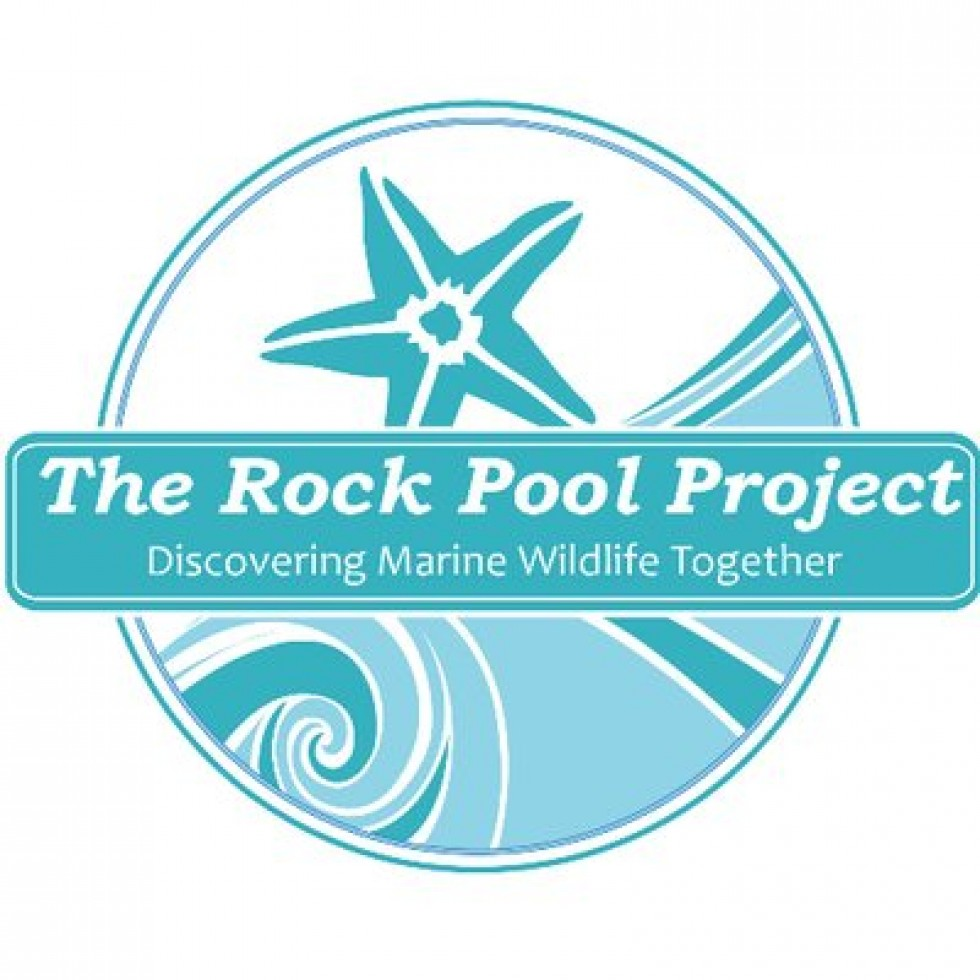 Rockpool Project