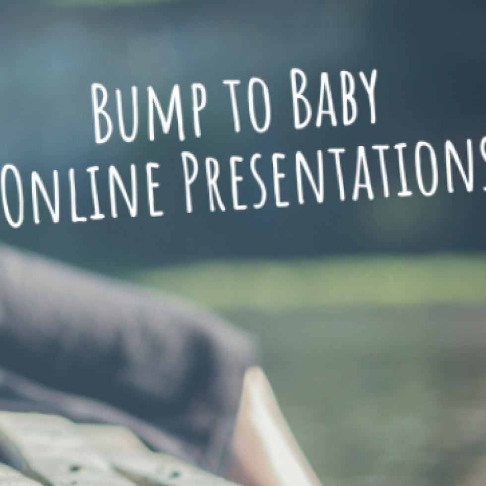 Bump to Baby Online Presentations
